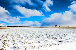 Winter landscape. Winter sunny landcape with trees, blue sky with clouds stock image