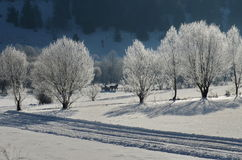 Free Winter Landscape Stock Photos - 61629913