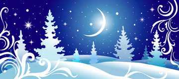 Winter landscape. Cold snowy night, vector illustration - see additional format Stock Images
