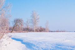 Free Winter Landscape Stock Image - 64616121