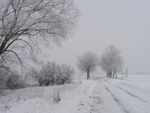 Winter landscape. With empty road stock images