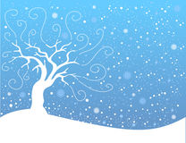 Winter landscape. Vector winter landscape with white snowflakes and trees Royalty Free Stock Image