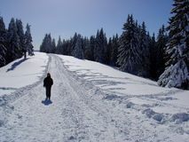 Winter Landscape. People in the middle of the nature Stock Image