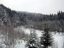 Winter landscape. Snowy winter landscape: river, forest, rocks Royalty Free Stock Photography