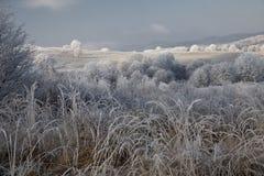 Winter landscape Stock Photos