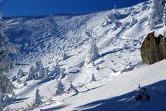 Winter landscape. The way to chalet Dochia in romanian Carpathians Royalty Free Stock Image