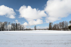 Winter Landscape, A Field Covered With Snow Stock Photography