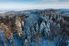 Winter landscape from above. View from the tower stock images