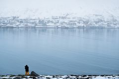Winter landscape of Akureyri city in Iceland with a man taking photograph. Winter landscape of Akureyri city in Iceland with a man taking photo Royalty Free Stock Image