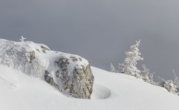 Winter landscape of alpine highlands in fog. View of winter fairy-tale frosen trees and rock in the Carpathians in misty stock photo