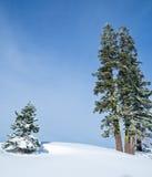 Winter Landscape of alpine resort Stock Image