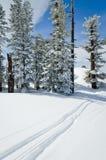 Winter Landscape of alpine resort Royalty Free Stock Photos