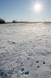 Winter landscape with animal spoor, sun and wind turbines. In Nordfriesland, Germany Royalty Free Stock Images