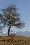 Winter landscape around Grenoble Royalty Free Stock Photo
