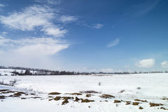 Winter landscape on background blue sky. With white cloud and snow Royalty Free Stock Image