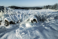 Winter Landscape Background. Royalty Free Stock Photography