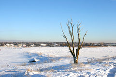 Winter landscape on Baltic Sea. Beautiful winter landscape in a cold sunny day, near city of Tallinn in Estonia. Part of Baltic Sea is frozen stock photos