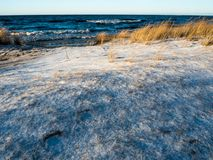 Winter landscape in Baltic sea beach. Cowered with show Stock Photography