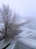 Winter landscape with bare tree and frozen canal Royalty Free Stock Image