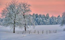 Winter landscape. Beautiful winter landscape in Bavaria Stock Images