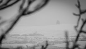 Winter landscape. Beautiful winter landscape framed with branches,black and white Royalty Free Stock Photography