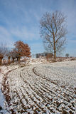 Winter Landscape - 05 Royalty Free Stock Photos