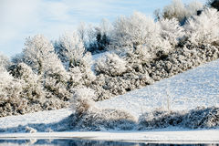 Winter Landscape. Beautiful sunny day in the winter on the river Erne, Co. Cavan , ireland Stock Photography