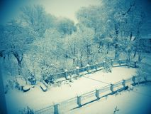 Winter landscape. Beauty, snow, snowing, garden Royalty Free Stock Photography