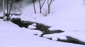 Winter landscape with birch. Winter landscape. River birch and snow stock footage