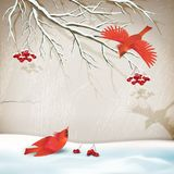 Winter Landscape with Birds Royalty Free Stock Images