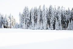 Winter landscape Black Forest Baden Württemberg Germany Stock Image