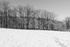 Winter landscape in black and white Stock Image