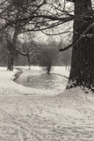 Winter Landscape in Black and White Stock Photography