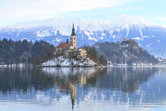 Winter landscape of Bled Lake Stock Photos