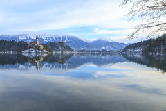 Winter landscape of Bled Lake. In Slovenia Royalty Free Stock Photography