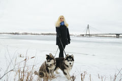 Winter landscape with blonde girl playing with siberian husky malamute dogs outside. Forest, beach, frozen river Royalty Free Stock Images