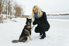 Winter landscape with blonde girl playing with siberian husky malamute dogs outside. Forest, beach, frozen river Royalty Free Stock Image