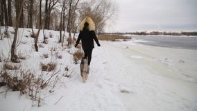 Winter landscape with blonde girl playing with siberian husky malamute dogs outside. stock video