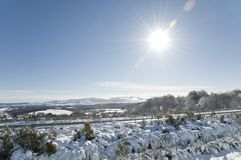 Winter landscape with a blue sky Stock Photography