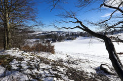 Winter landscape with blue sky Stock Images