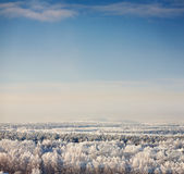 Winter landscape with blue sky Stock Photography