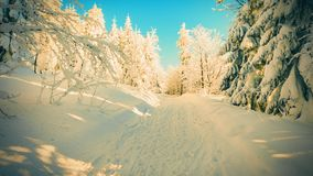 Winter landscape with blue sky. Snail icing on trees. Beautiful winter landscape. Royalty Free Stock Photos