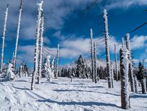 Winter landscape with blue sky royalty free stock photo
