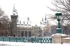 Winter landscape in Budapest Royalty Free Stock Photos