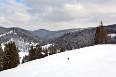 Winter landscape from Bukovina Royalty Free Stock Photos