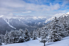 Winter landscape of the Canadian Rockies. At Banff Canada royalty free stock photography