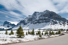 Winter landscape. Canadian Rocky Mountains. Winter landscape. Canadian Rocky Mountains, fir trees, and frozen Bow Lake covered by snow. Banff National Park Royalty Free Stock Images