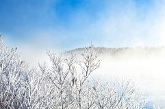 Winter landscape, captured in Finland Stock Image