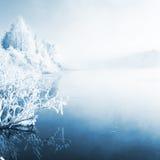 Winter landscape, captured in Finland Stock Images