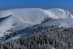 Winter landscape in the Carpathian mountains Stock Image